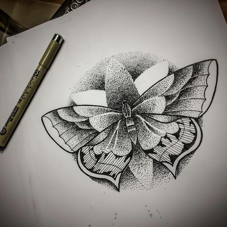 #blackwork #dotwork #jimmybct #cyphertattoo #butterfly #ct #tattoo #idea #drawing