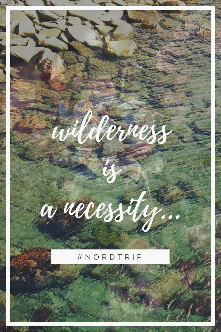 """""""Wilderness is a necessity""""   ❤  #quote #travel #quotes #inspiration #wanterlust #norway #norge #nordtrip #scandinavia #wilderness"""