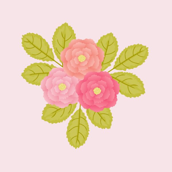 Create Peonies the Quick and Easy Way in Adobe Illustrator - Tuts+ Design & Illustration Tutorial