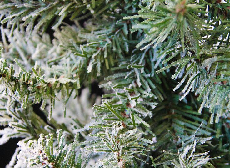 Best 25 Winter Trees Ideas On Pinterest