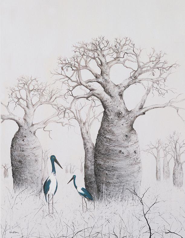 Jabiru and Boab Trees