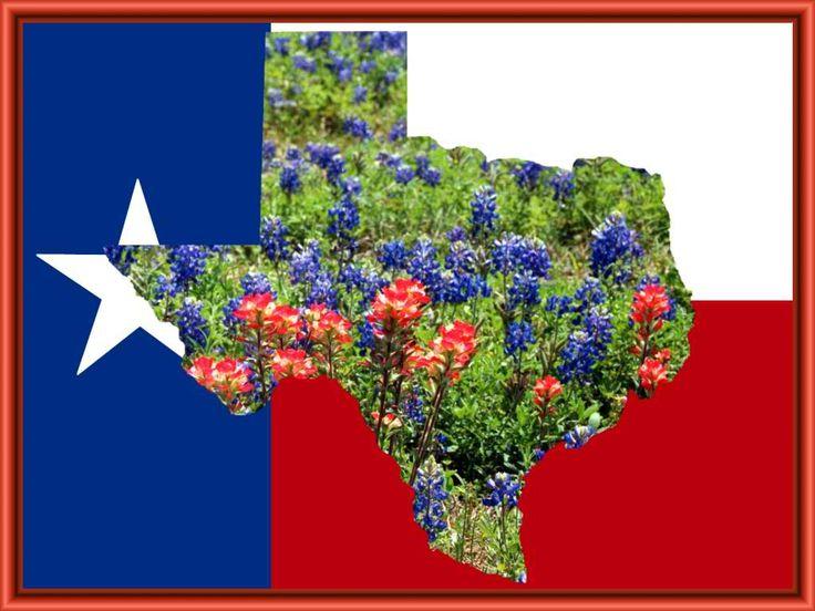 Texas Flower Bluebonnet Tattoos Pinterest Flower