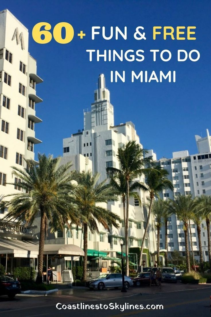 60 Free Things To Do In Miami That Won T Cost You A Thing Coastlines To Skylines Miami Travel Miami Travel Guide Free Things To Do