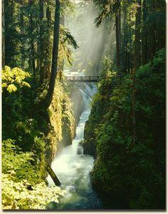 Sol Duc Falls-Olympic Peninsula Washington - a beautiful hike!