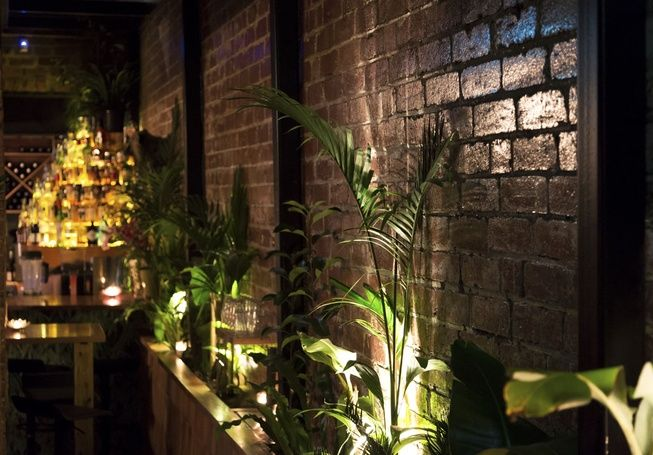 Late Night Jungle Boy and Boston Sub Open in Chapel Street Windsor - Nightlife - Broadsheet MelbourneCool Room