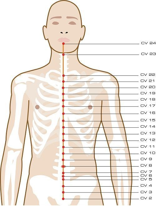 Conception Vessel Acupuncture Points Site has concise view of each meridian and its points. /a