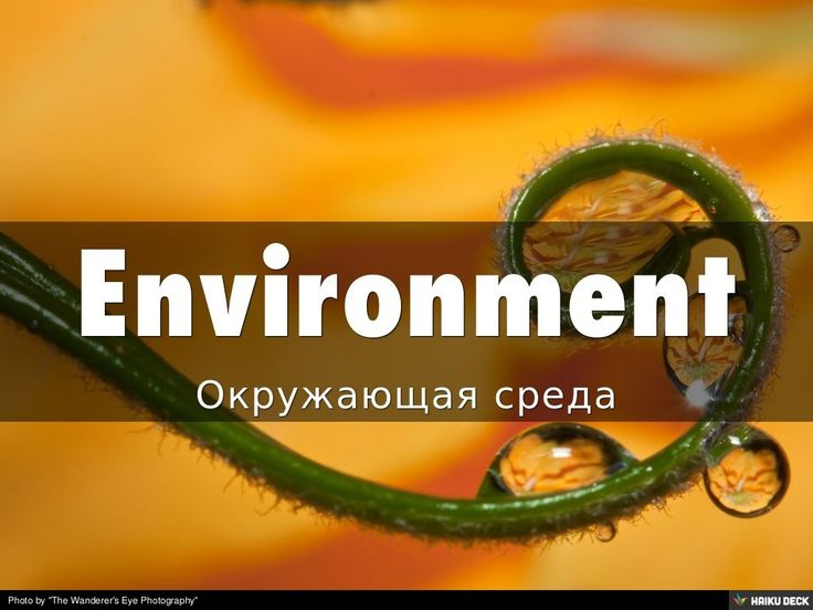 Окружающая среда - Environment! Английский язык каждый день.