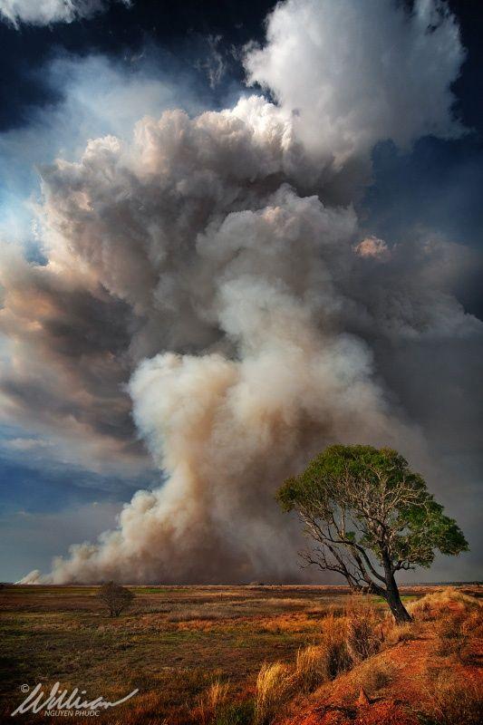 Pirocumulus on 500px by William Nguyen-Phuoc, Darwin, Australia ☀ 533✱800px-rating:95.8