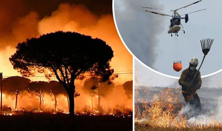 Spain holiday WARNING: Thousands evacuated as HUGE forest fire puts UK tourists on alert