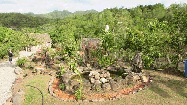 Martinique - La Savane des Esclaves