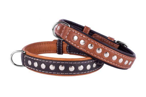 Cuero tachonado Collar de perro marrón cachorro negro XLarge