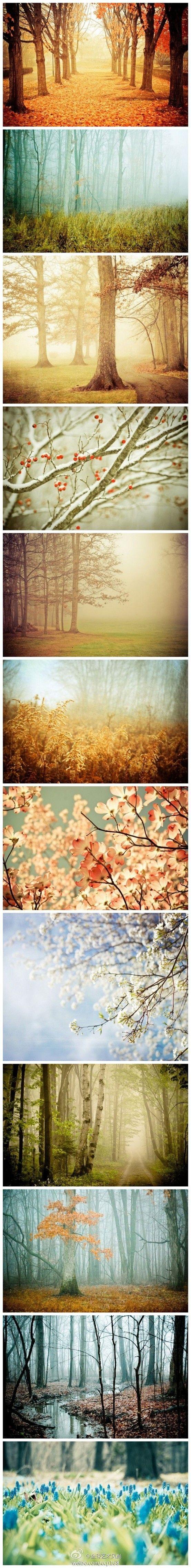 :) natural beauty