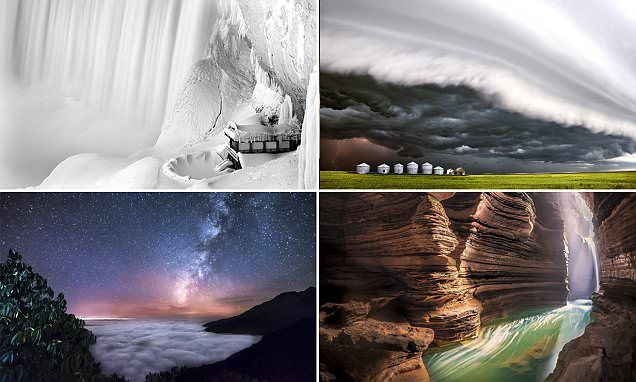 The Stunning Winners Of A Power Of Nature Photography Competition Nature Photography Photography Competitions Nature Photos