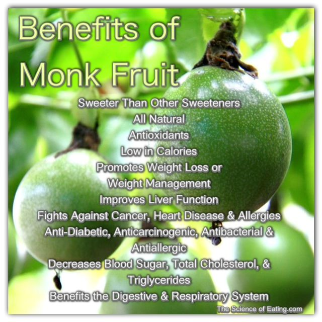monk fruit sweetener is an avocado a fruit