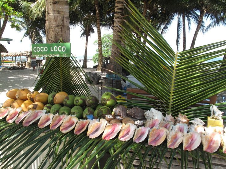 I have been on so so many catamaran sails from Ambergris Caye to Caye Caulker. I…