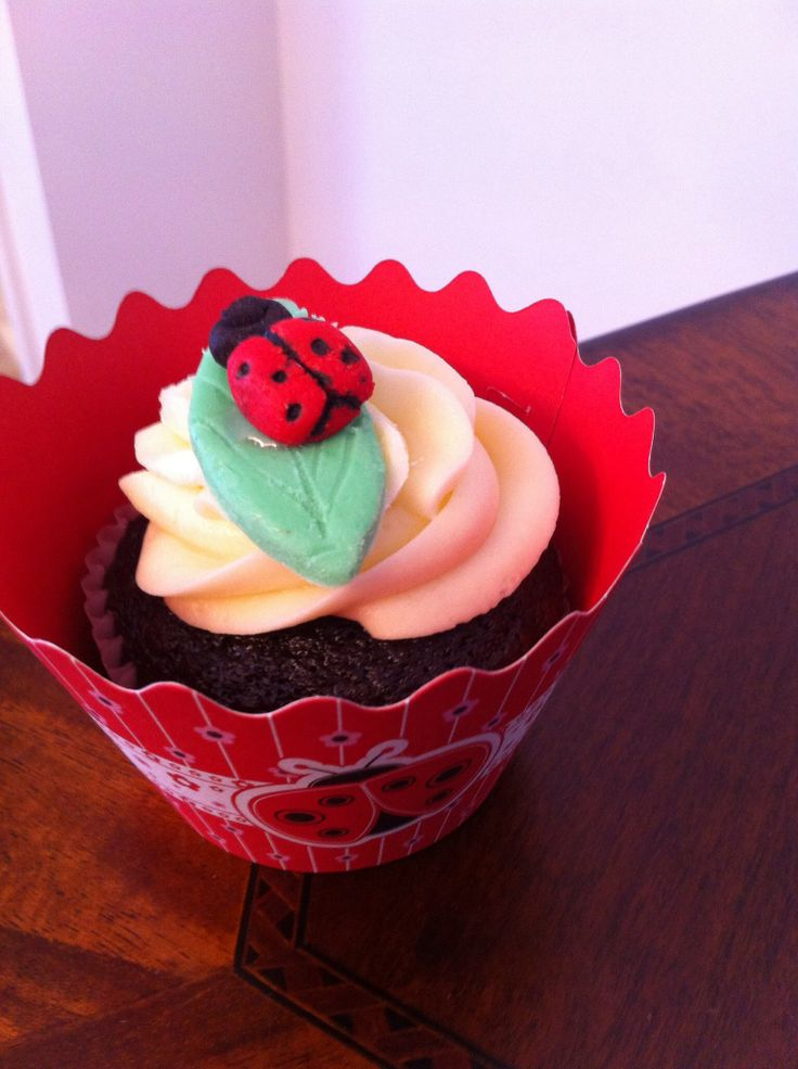 Lady bug cupcake-birthday lady bug theme - chocolate cupcakes -delicious ! We make any kind of theme you want .