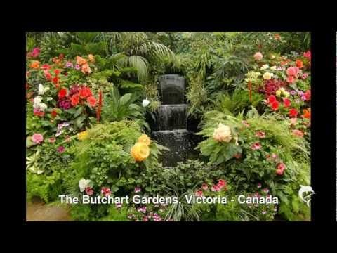 Music : Voices of Spring by Johann Strauss    The Exbury Garden, Hampshire - England  Mae Fah Luang Garden, Changrai - Thailand  Bodnant Gardens, Tal y Cafn - Wales  The Garden of the Chateau Villandry, Villandry - France  The Garden of the Het Loo Palace, Apeldoorn - Holland  The Garden of the Villa Lante, Bagnaia - Italy  The Garden of the Alh...
