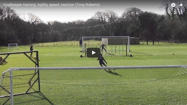 Trening bramkarski trenera Swansea City Tony Robertsa - zwinność, szybkość, czas reakcji • Zobacz trening bramkarski w Premier League #swansea #trening #bramkarz #pilkanozna #futbol #sport #football #soccer #sports #training