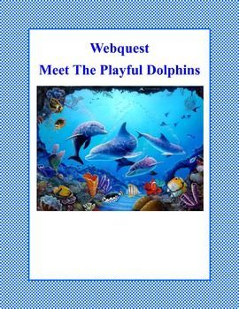 The dolphin is one of the most playful and intelligent animals on our planet. Even though dolphins spend their lives in the water, they are not fish, but are mammals. This is a web search designed to give students factual information about the different types of dolphins as they read for information using the internet.