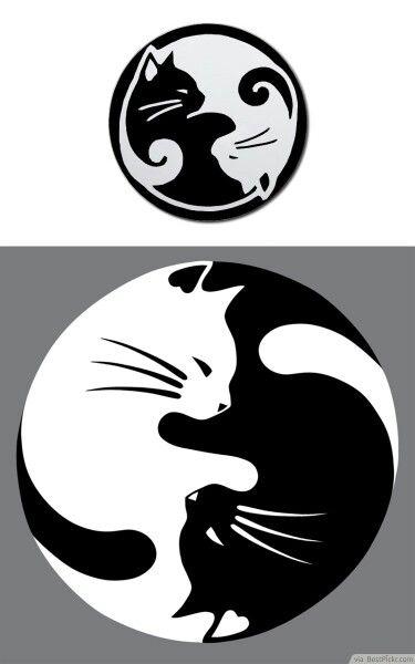 Potential best friend tattoo. Cat tattoo. Yin and yang