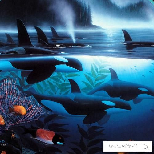 Pictures+by+Wyland | wyland orca journey litho 24 wyland wyland lithograph 17 5