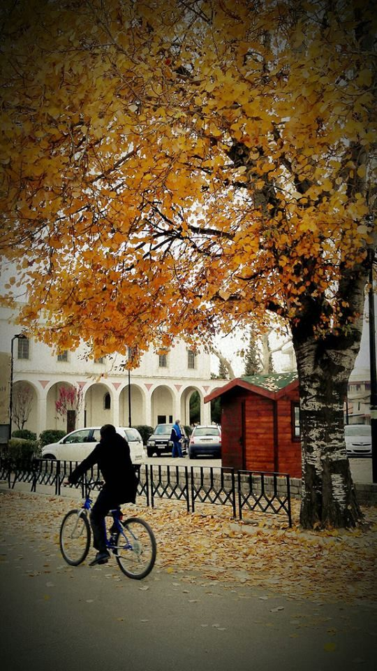 Autumn in Komotini. (photo by odysseaskg) #meetGreece