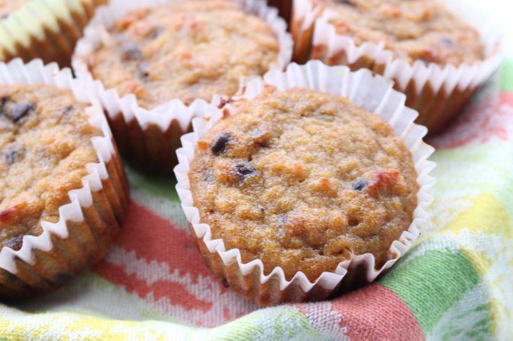 Bet you can't eat just one! Pumpkin Chocolate Chip Muffins -- glutenfree, grainfree.