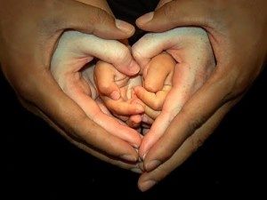 Gorgeous shot - three generations of hands forming a heart <3