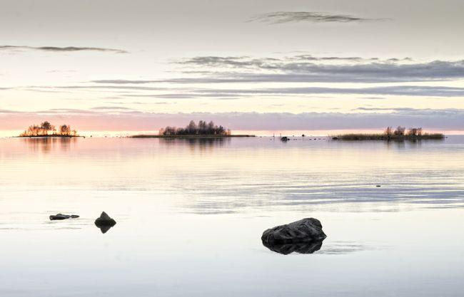 #kajo by Leena Holmström