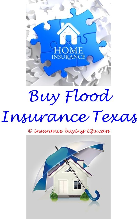 can you buy travel insurance after booking your trip - how much flood insurance should i buy.buy a brand new car with free insurance buy ibx insurance compare buy to let insurance uk 2744270982