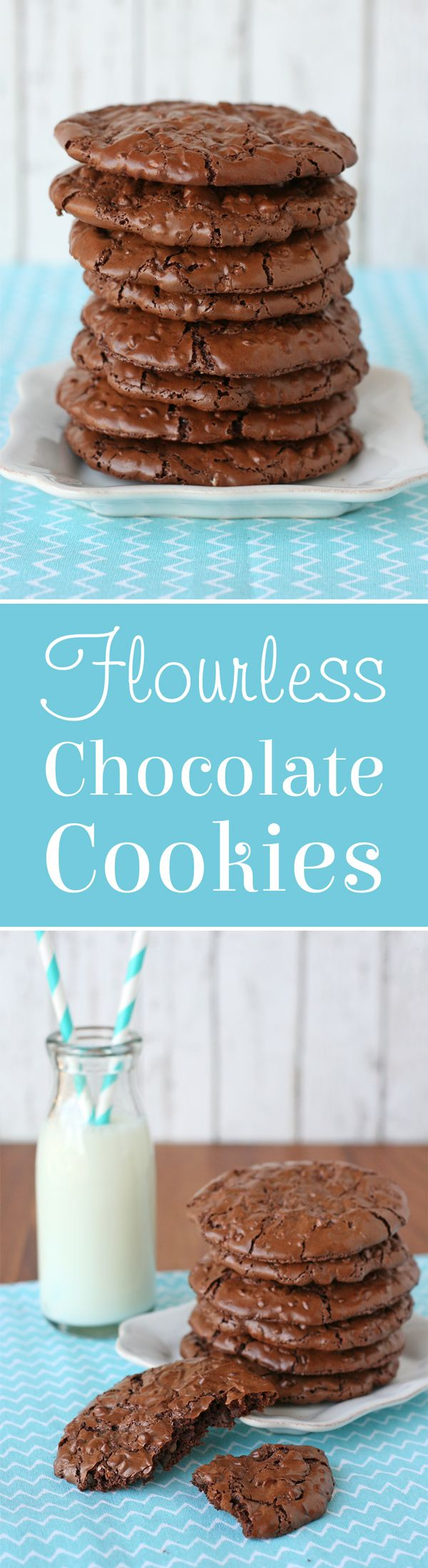 These Flourless Chocolate Cookies are so delicious and fudgy you would never know they're gluten free and dairy free!