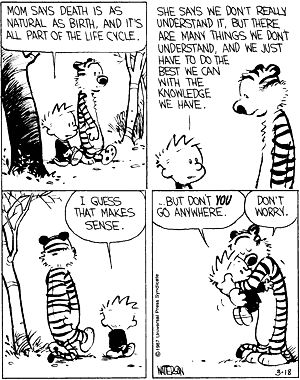 Let me show you what I see: Calvin and Hobbes