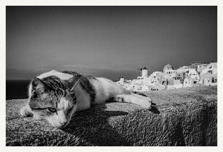 Vassilis Artikos Photography - .............GR101.............. Greece - Santorini
