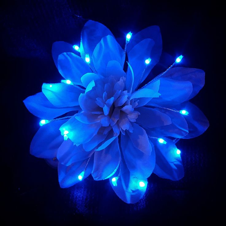 Картинки светящийся цветы