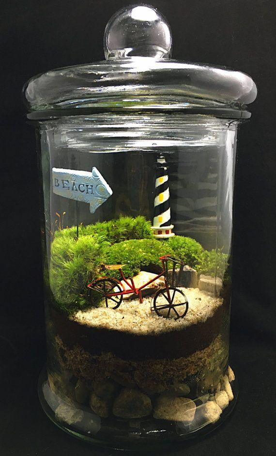 Beach Terrarium-Bike Terrarium-Moss by TerraSphereTerrarium