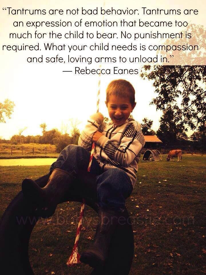 Rebecca Eanes- Don't know if I agree with this 100%.  But we need to better understand  what is going on with them before any punishment is administered.
