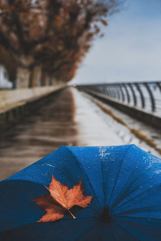 Rainy days by Luis Valadares on 500px