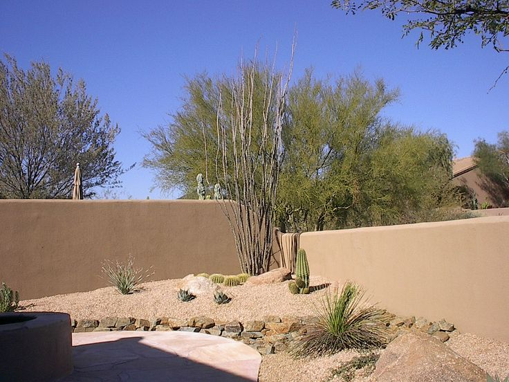 28 best desert landscaping images on pinterest arizona for Desert landscape design