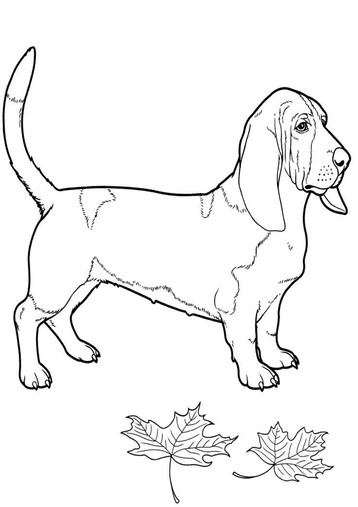 Kolorowanki Psy Malowanka Piesek Obrazek Pies Do Wydruku