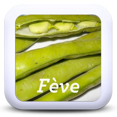 Cuisiner les fanes et pluchures de vos l gumes - Cuisiner les girolles fraiches ...