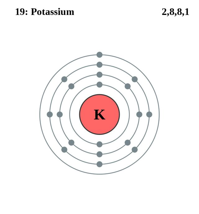 20 best atomic structures images on pinterest atoms shell and shells atom diagrams potassium atom ccuart Image collections