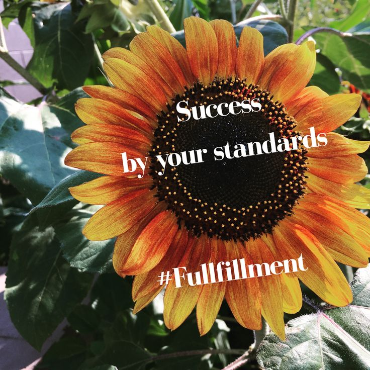 Success by your standards #fullfillment