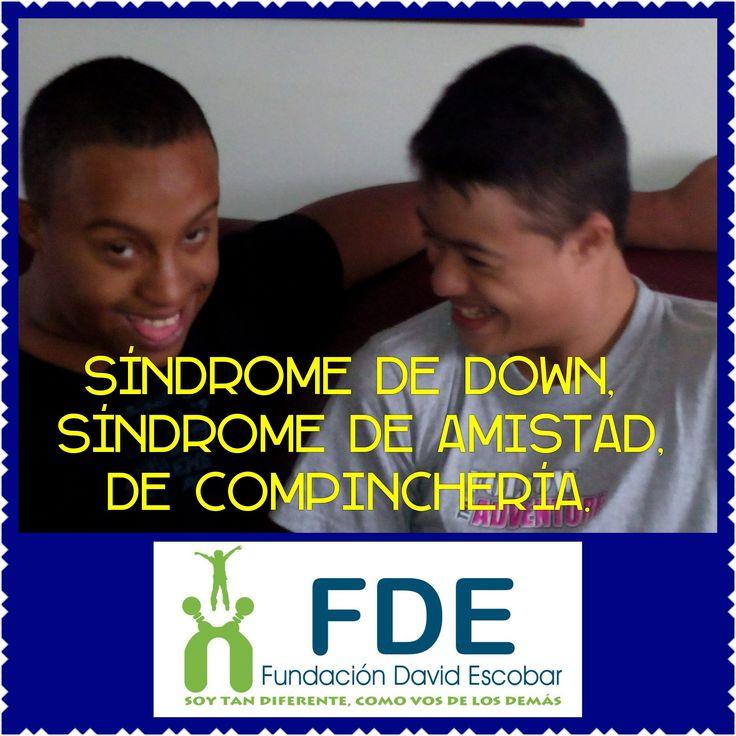 Marzo6 #dia6 #diamundialdelsindromededown #fundaciondavidescobar #diversidad
