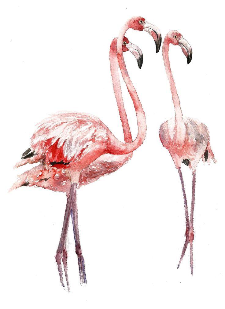 1000 Ideas About Flamingo Nursery On Pinterest