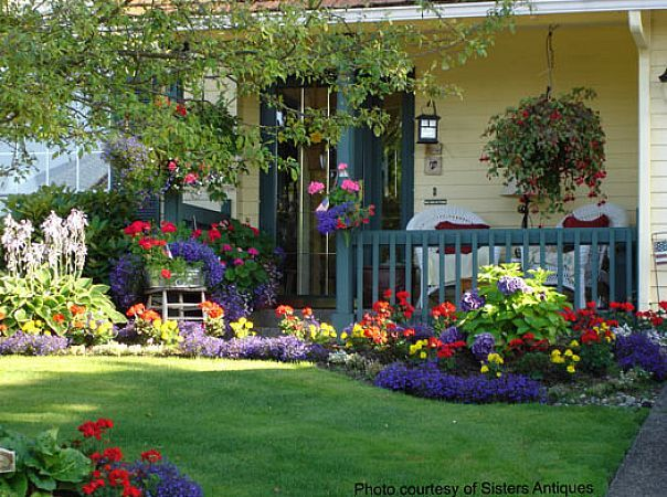 a to z encyclopedia of lawn flowers