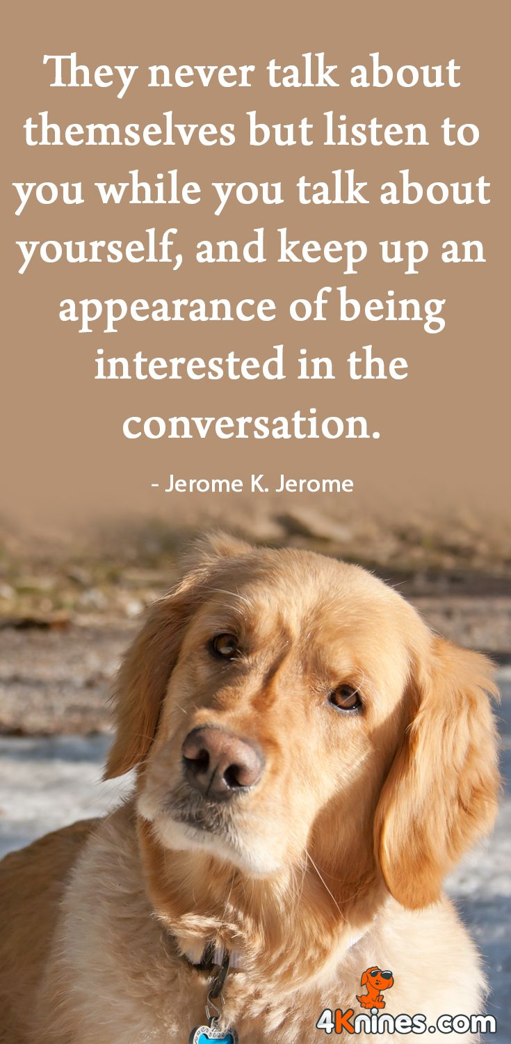 Quotes About Dogs And Friendship 753 Best Inspirational Dog Quotes Images On Pinterest  Friends