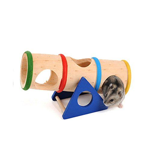 Wildlife Hamster Supplies Pet Animals Hamster Funny Rainbow Seesaw Play Toy Wooden Pet Supplies >>> See this great product.Note:It is affiliate link to Amazon.