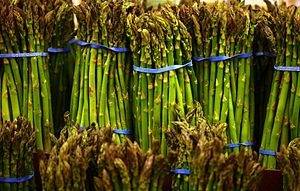How to Keep Asparagus Fresh for 2 Weeks | Cooking and Baking info ...