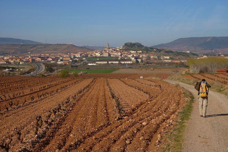 Navarrete, La Rioja :: Albergues del Camino de Santiago