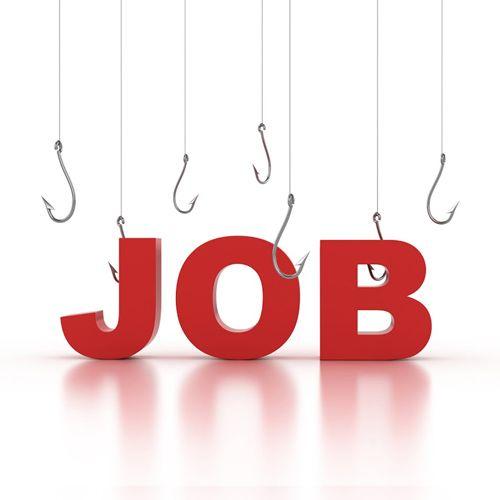 CareerBliss Job Alerts